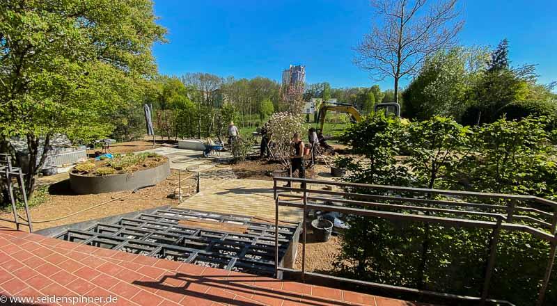 Azubi Projekt Terrasse Bepflanzung-3483