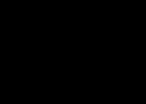friedrichsbau logo black